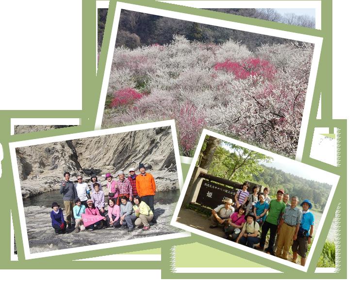 山行の様子と山の自然