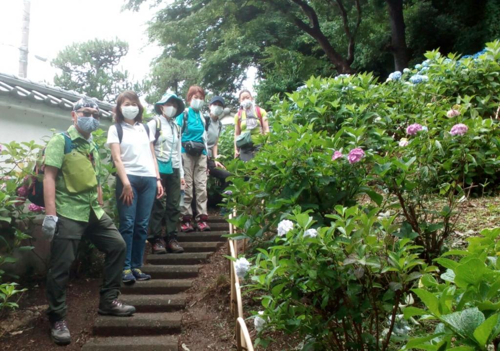 【定例山行報告】2020年6月14日(日)枡形山